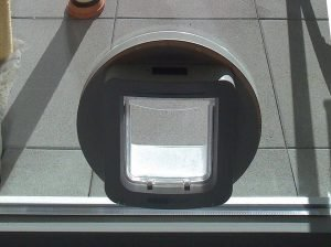 Katzentür in Isolierglas